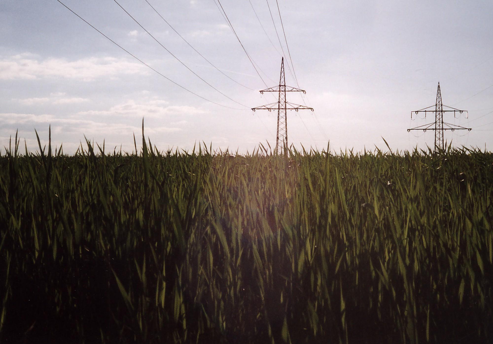 Untere Hälfte Grasfeld bis zum Horizont, Obere Hälfte Himmel, auf dem Feld stehen 2 Strohmmasten